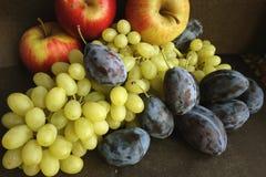 Ainda vida de frutas do outono Foto de Stock Royalty Free
