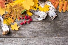 Ainda vida de ingredientes do outono foto de stock