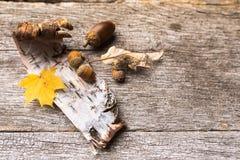 Ainda vida de ingredientes do outono imagem de stock royalty free