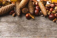 Ainda vida de ingredientes do outono fotos de stock