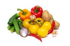Ainda vida de legumes frescos em um fundo branco Imagens de Stock