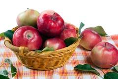 Ainda vida de muitas maçãs em um guardanapo na cesta Imagens de Stock Royalty Free