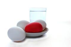 Ainda vida de um ovo em um prato um o vidro da água Foto de Stock Royalty Free