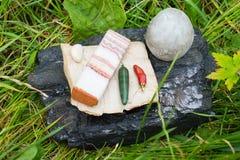 Ainda vida de uma pedra na natureza Ovos, bacon, pão, pimenta, peixe-agulha Foto de Stock