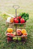Ainda a vida de vegetais coloridos maduros e os frutos na cesta submetem fora na grama Fotos de Stock