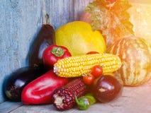 Ainda vida de vegetais do outono: melão e melancia, milho, beringela, pimentas, tomates Fotografia de Stock Royalty Free