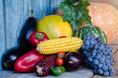 Ainda vida de vegetais do outono: pimentas, melancia, uvas, melão, milho, beringela Foto de Stock Royalty Free