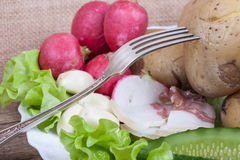Ainda vida do alimento rústico no close up do prato Imagem de Stock Royalty Free