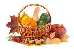 Ainda-vida do outono com abóboras Fotos de Stock