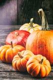 Ainda-vida do outono com abóboras Imagem de Stock Royalty Free