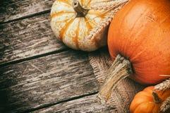 Ainda-vida do outono com abóboras Fotografia de Stock Royalty Free