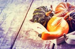 Ainda-vida do outono com abóboras Imagem de Stock