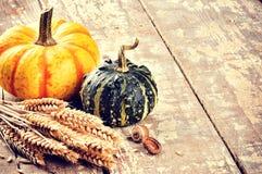 Ainda-vida do outono com abóboras e trigo Foto de Stock Royalty Free