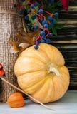 Ainda-vida do outono com grande grupo Imagem de Stock Royalty Free