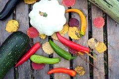 Ainda-vida do outono com os vegetais maduros exteriores Imagens de Stock