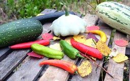Ainda-vida do outono com vegetais maduros Foto de Stock Royalty Free