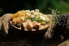 Ainda vida do queijo com porcas, ervas e grupo da alfazema Fotografia de Stock Royalty Free