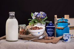 Ainda vida dos produtos láteos com leite Imagem de Stock