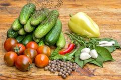 Ainda vida dos tomates, das pimentas e das especiarias Imagem de Stock Royalty Free