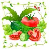 Ainda vida dos tomates e dos pepinos Fotos de Stock
