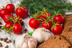 Ainda vida dos tomates, pão preto, alho, erva-doce, bayberry p Imagens de Stock Royalty Free