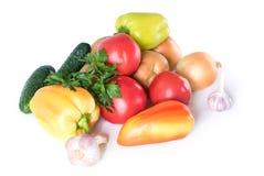 Ainda vida dos vegetais e da salsa Fotos de Stock