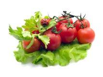 Ainda-vida dos vegetais e de uma joaninha Fotos de Stock Royalty Free