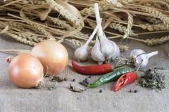 Ainda vida dos vegetais que encontram-se no pano de saco Fotos de Stock Royalty Free