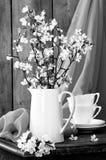 Ainda vida em preto & no branco Imagens de Stock