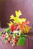 Ainda vida em um copo com ramos do curran vermelho, branco e preto Fotografia de Stock