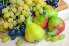 Ainda vida - fruto brilhante na tela clara Preto e gre do vintage Imagem de Stock