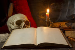 Ainda vida gótico Imagens de Stock Royalty Free