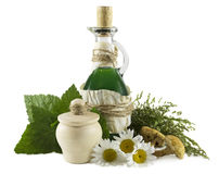 Ainda vida homeopaticamente 3 Imagens de Stock Royalty Free