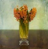 Ainda vida, jacintos cor-de-rosa românticos no vidro Imagem de Stock Royalty Free