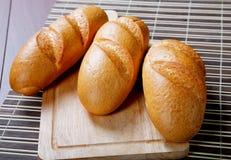 Ainda-vida longa de três loafs Fotos de Stock Royalty Free