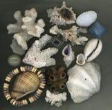 Ainda-vida marinha Fotografia de Stock Royalty Free