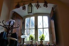 Ainda vida na janela Fotografia de Stock Royalty Free