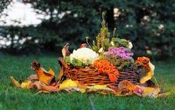 Ainda vida na natureza com cesta Fotografia de Stock