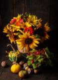 Ainda vida nas cores do outono Fotografia de Stock