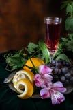 Ainda vida no estilo antigo com um vidro do vinho, das uvas e de dois Fotos de Stock