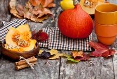Ainda vida no estilo da cor do outono Imagens de Stock