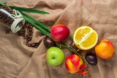 Ainda vida no fundo do ensaque: maçã, pêssegos, orance, ameixas Imagens de Stock Royalty Free