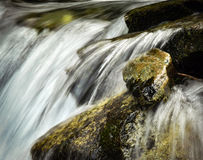 Ainda vida no rio selvagem das ondas Fotos de Stock