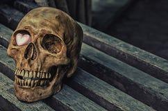 Ainda vida o crânio e o coração cor-de-rosa na tabela de madeira Imagem de Stock Royalty Free