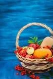 Ainda vida outonal com abóboras, maçãs e sorva Foto de Stock Royalty Free