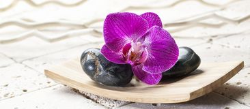Ainda-vida para a beleza e termas com elementos naturais Foto de Stock