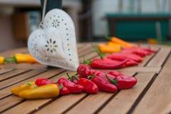 Ainda vida 1 Pimentas no verão imagem de stock