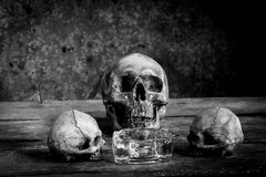 Ainda vida preto e branco com os crânios humanos na madeira Fotografia de Stock