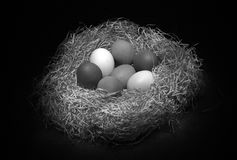 Ainda vida preto e branco com ovos Foto de Stock