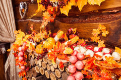 Ainda vida que consiste nas folhas alaranjadas, vegetais do outono Imagem de Stock